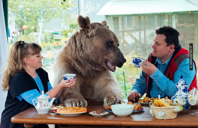 russian-couple-lives-with-adopted-bear-02