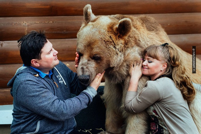 russian-couple-lives-with-adopted-bear-03