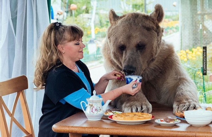 russian-couple-lives-with-adopted-bear-04