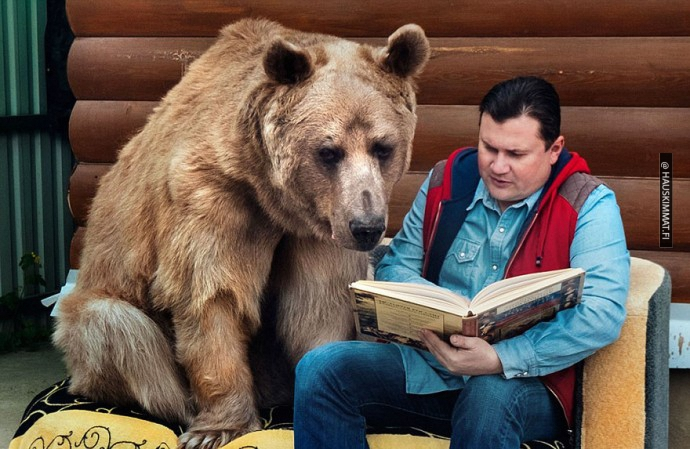 russian-couple-lives-with-adopted-bear-05