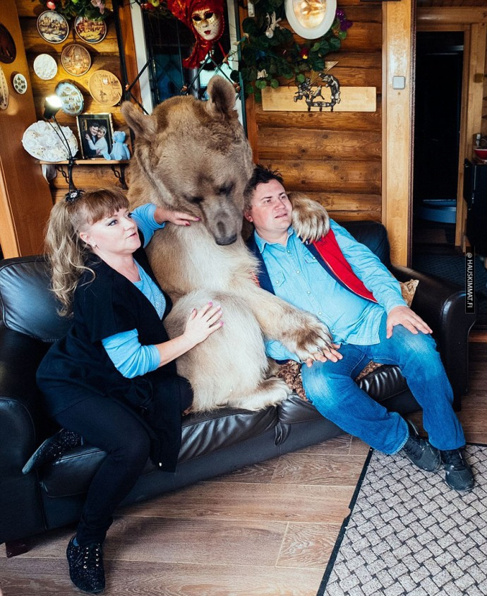 russian-couple-lives-with-adopted-bear-08