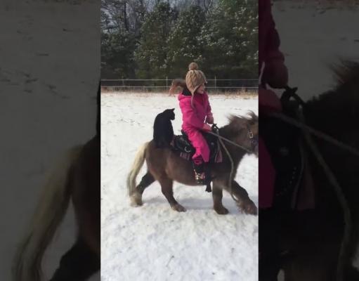 2018 hierontaa ratsastaa