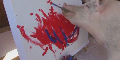 Ei Picasso vaan Sikasso – nämä työt ovat sikamaisen kalliita