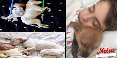 Lapset ja koirat! – Näihin kuviin jokaisen sydän sulaa!