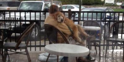 Koirat ovat ihania – nämä kuvat todistavat sen täydellisesti