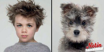 Koirat ja omistajat muistuttavat toisiaan! – Katso 10 mahtavaa kuvaa!