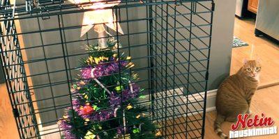 Tuhoaako lemmikkisi joulukuusen? – Tässä estoniksit!