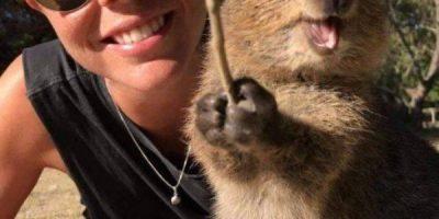 Jokaisella on joskus huono tai surullinen päivä – eläimet korjaavat tilanteen