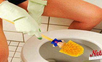 Pese wc-pönttösi Trump-harjalla! – Tuotteella uskomaton suosio!