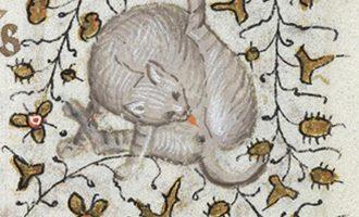 Keskiajalla kissat muistettiin yhdestä asiasta – taidetta monista tapauksista