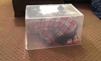 Lapset ovat ihania, mutta surkeita leikkimään piilosta – 8 jäätävää esimerkkiä