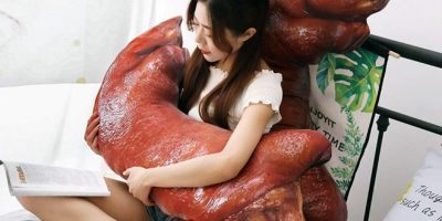 Sairasta vai sairaan hienoa? – Realistisen näköisiä sianjalka tyynyjä