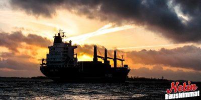 Merenpohjasta sukellettiin miljoonalöytö! – Yli 100-vuotta vanhaa konjakkia!