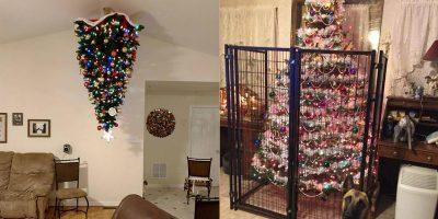 Omistatko lemmikin? – Tässä ohjeet kuinka pitää joulukuusi turvassa tänä jouluna